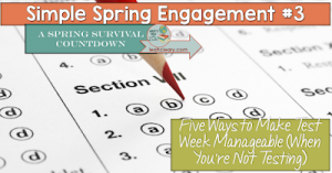 Testing week is never fun for anyone, and sometimes we end up with classes of students for long periods of time while other groups test. How can we work through that with high school students? In this post, I'm sharing five ways to make test week manageable for secondary students and teachers. Click through to learn the five tips!