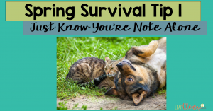 On this, the very last week of school before summer vacation, there's one thing you need to keep in mind: Just know you're not alone. Every teacher deals with squirrely students who are done with school and ready for summer. I'm giving three tips for how I remind myself I'm not alone, so click through to read them inside.